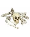 Halloween zak met 12 botten van skelet