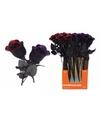 Halloween halloween kunst roos zwart met paars